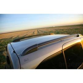 Citroen baca vehiculo comercial