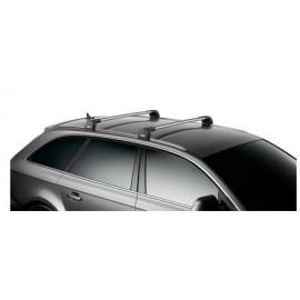 Opel, vehículo comercial